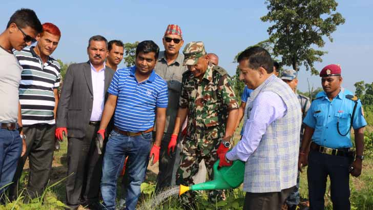 NA Launched Massive Tree Plantation Campaign